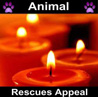 Animal Rescues Appeal