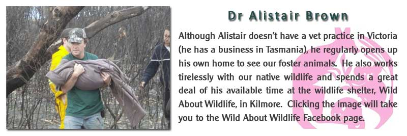 Dr Alistair Brown